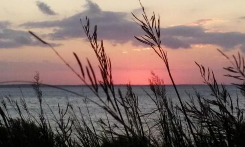 monteray shores